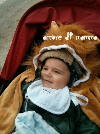Crescita neonato 5-6 mesi - leoncino
