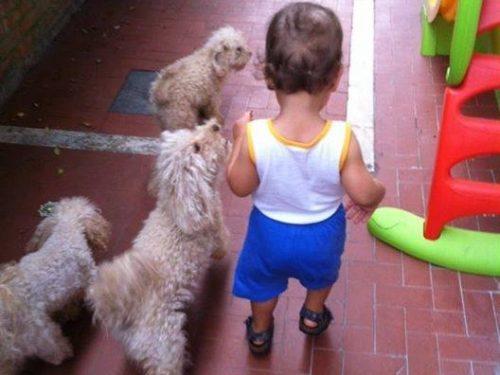Cani e bambini: vi dico la mia