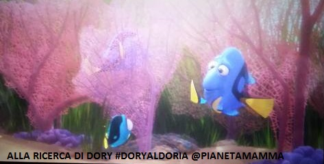 alla ricerca di dory(2)