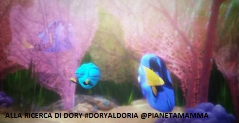 alla ricerca di dory(3)