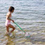 Rimedi per le punture degli animali estivi: il vademecum da scaricare gratis
