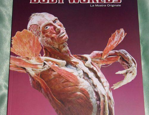 Body Worlds, la mostra sul corpo umano da vedere a Roma
