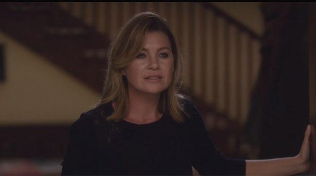 Meredith shock