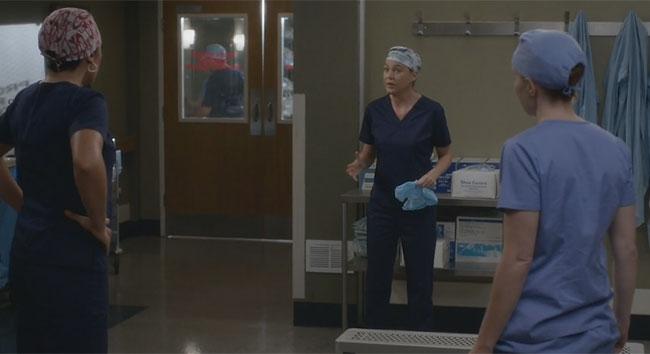 Meredith, Callie e Penny