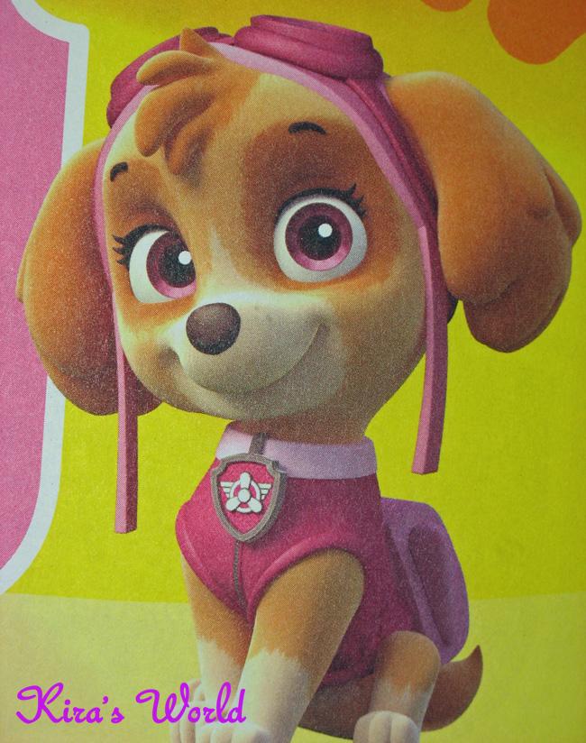 Dvd film cinema cartone animato paw patrol i salva cuccioli eur