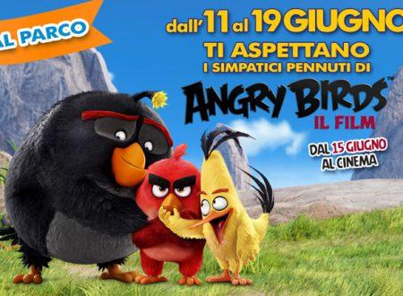 2 weekend a Rainbow Magicland con i simpatici pennuti di Angry Birds