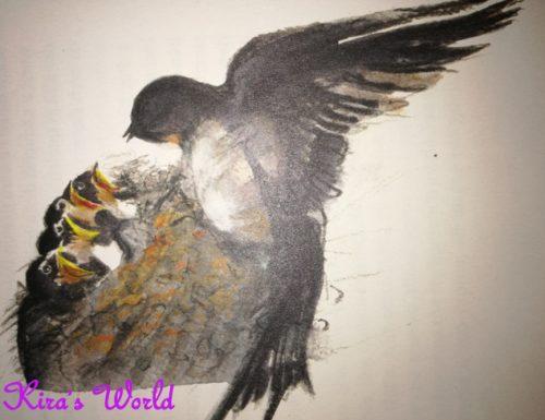 Diario del nido di rondini, un libro per bambini