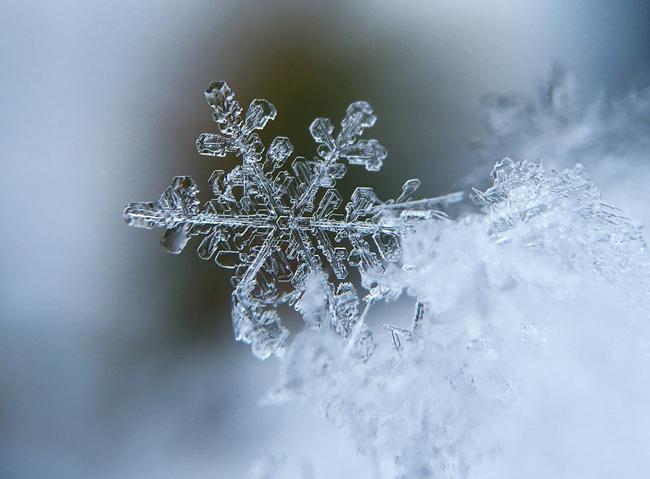 Frozen, lo spettacolo immersivo