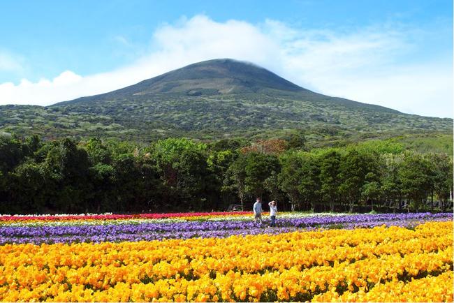 Isola di Hachijojima