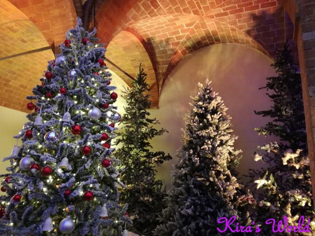 Giardino d'inverno nel Castello di Babbo Natale