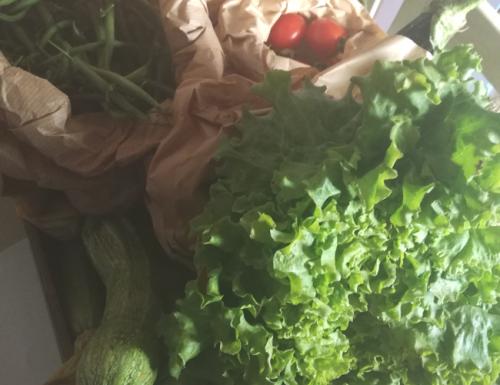 Ambiento, frutta e verdura biologica a domicilio