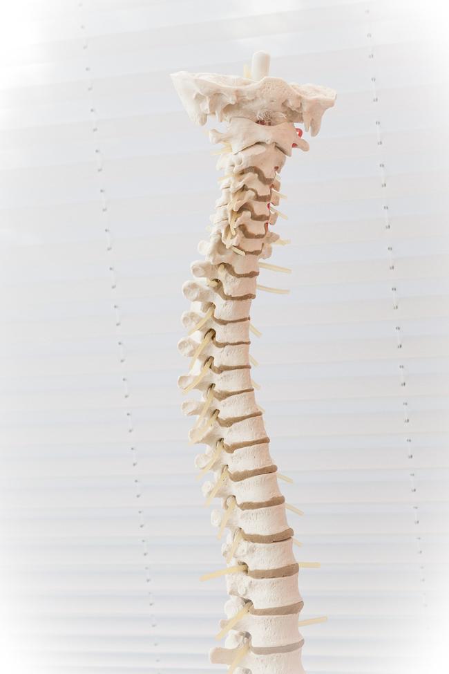 Operazione alla schiena