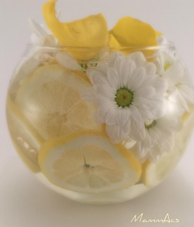 vaso fiori1