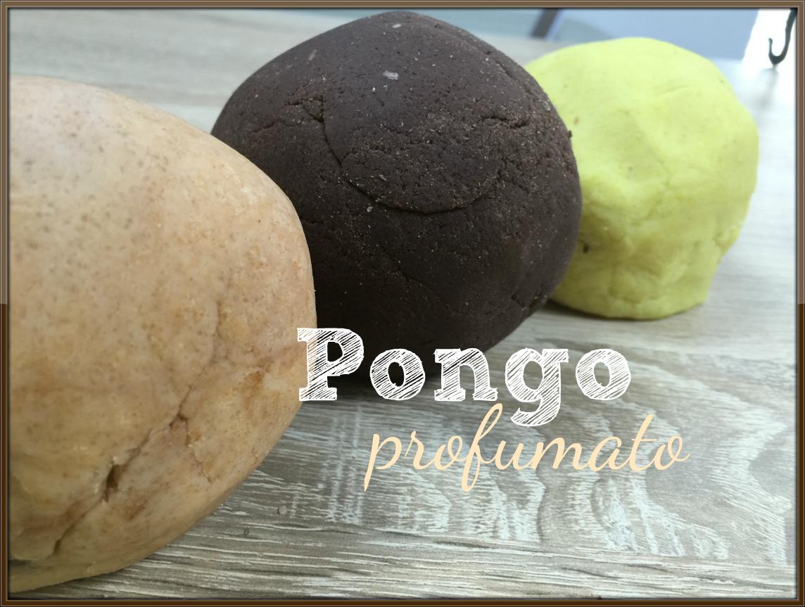pongoprof4