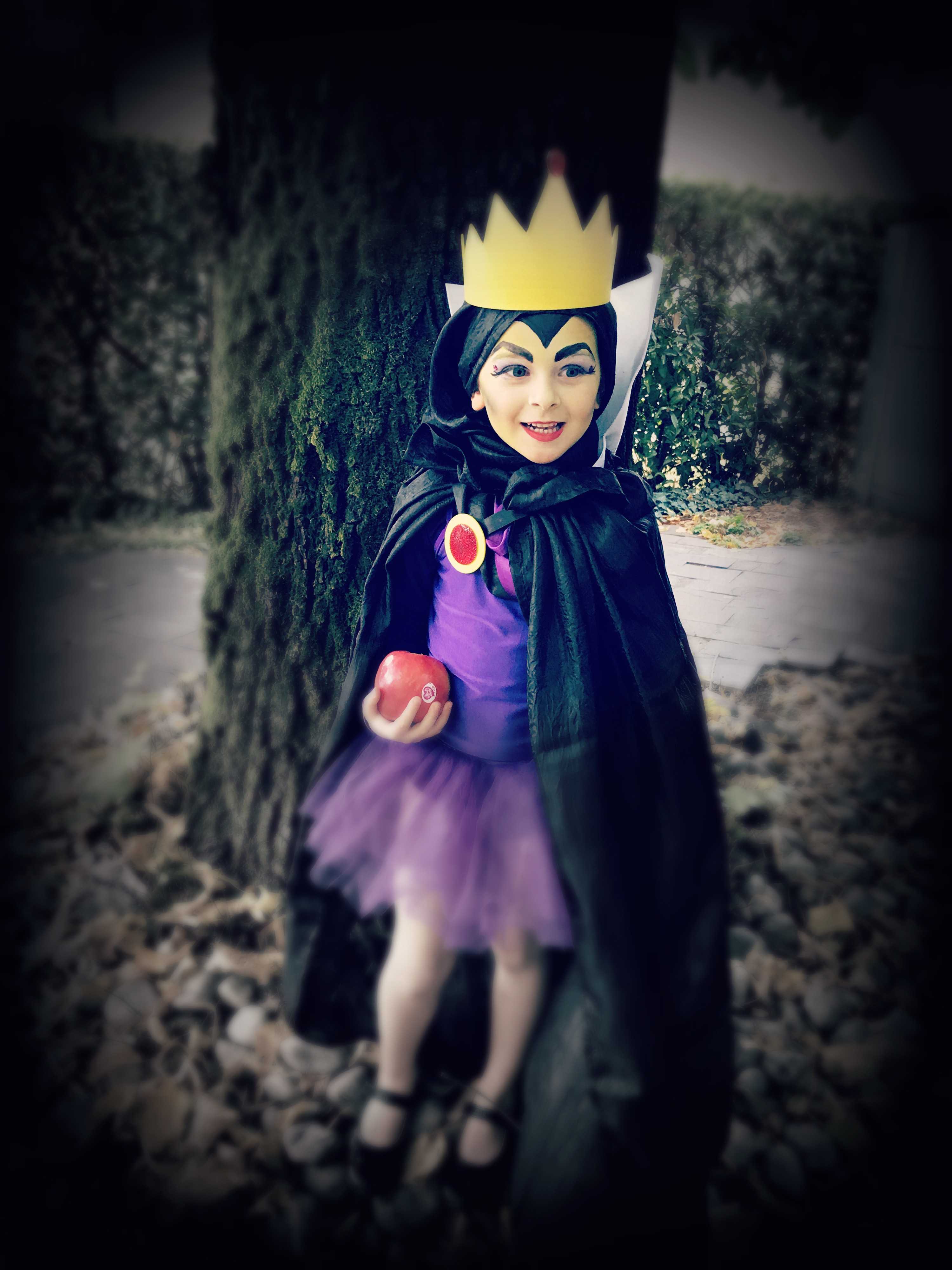 49fa5eed1a7c Costume da regina di Biancaneve | MammAcs