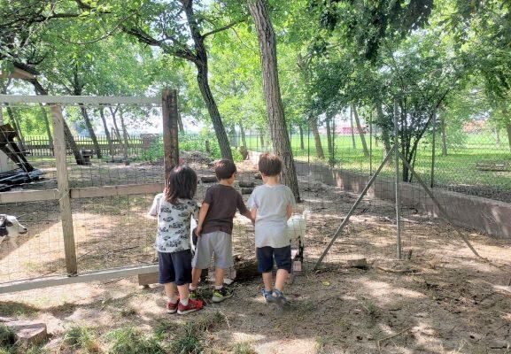 Dicono che il periodo più felice della vita sia quello della scuola dell'infanzia.