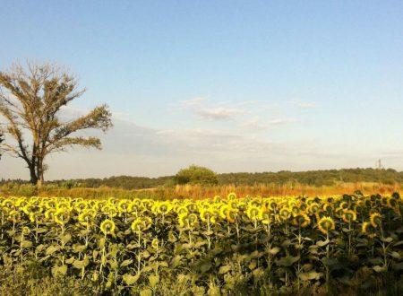LaToscana a ottobre  -Agriturismo Ca lo Spelli –