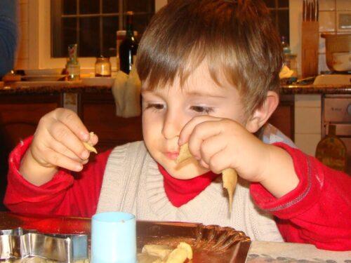 biscotti zenzero e cannella  (santo bimby)